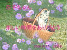 61016花子ちゃん